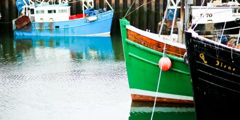 Boats in Portavogie harbour