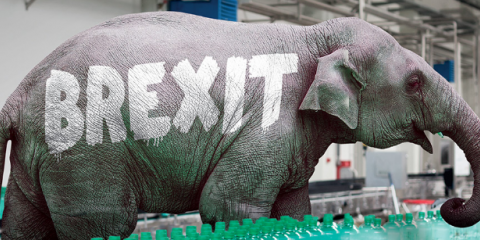 elephant with brexit written on it